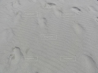 海の写真・画像素材[588821]