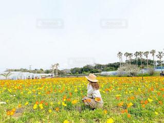 野原の黄色い花の中の人の写真・画像素材[2100793]