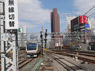 新宿の写真・画像素材[584969]