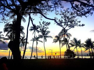 ハワイの写真・画像素材[614055]