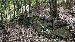 古い登山道の写真・画像素材[3794663]