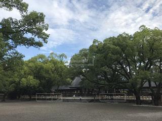 日本の写真・画像素材[685608]