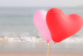ビーチで水のペットボトルの写真・画像素材[711454]