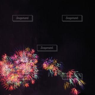 光の花束の写真・画像素材[623263]