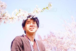 お花見の写真・画像素材[2091113]
