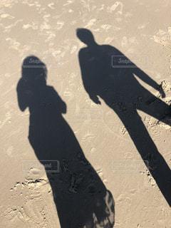 ビーチに立っている黒い鳥の写真・画像素材[1285687]