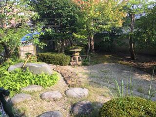 クローズ アップ庭園のの写真・画像素材[923110]