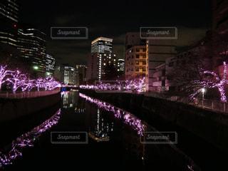 夜の街の景色の写真・画像素材[907204]