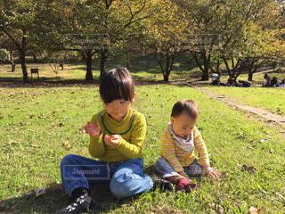 風景 - No.587915