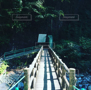 橋の近くの木製のベンチの写真・画像素材[769615]