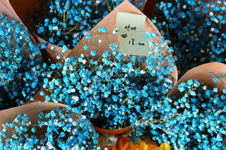 flowerの写真・画像素材[588586]