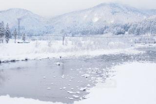 雪の降る川の写真・画像素材[915238]