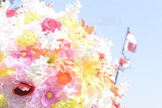 花の写真・画像素材[588701]