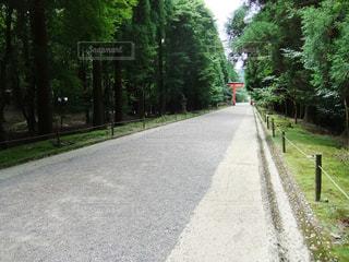 神社の写真・画像素材[589516]