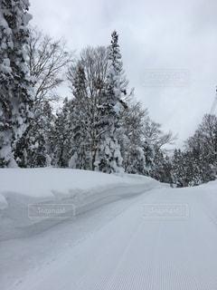 スキー場の写真・画像素材[604941]