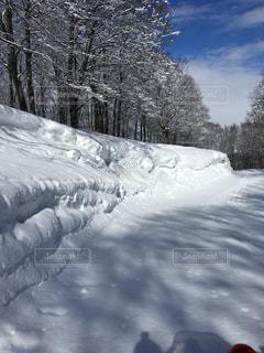スキー場の写真・画像素材[605005]
