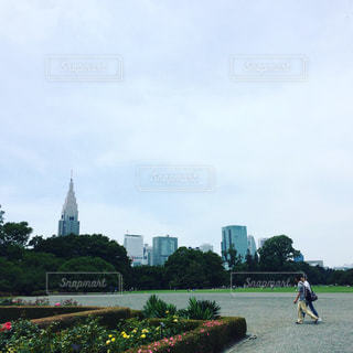 公園の写真・画像素材[590268]