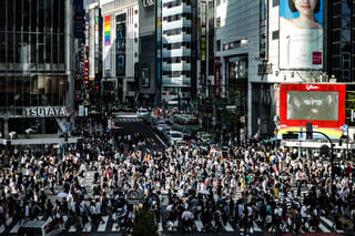 東京の写真・画像素材[590388]