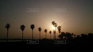 夕日の写真・画像素材[595748]