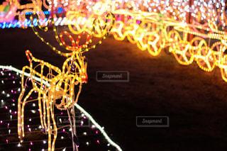 光のクローズアップの写真・画像素材[2429011]