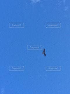 空の写真・画像素材[17551]