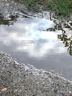 雨の写真・画像素材[593108]