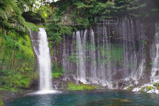 森の中の大きな滝の写真・画像素材[939879]