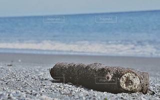 海の写真・画像素材[452033]