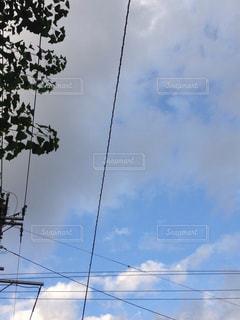 曇りの日の写真・画像素材[799462]