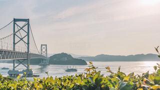 大鳴戸橋と夕日の写真・画像素材[2239393]