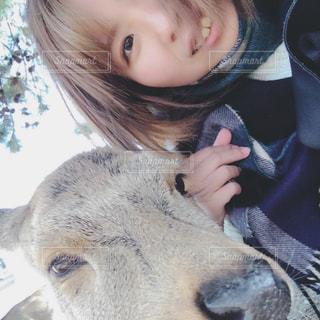 奈良の鹿と一緒に - No.1111195