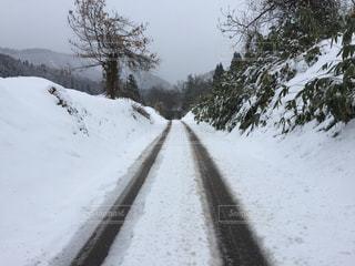 雪の側に木にパス対象斜面の写真・画像素材[936148]