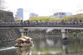 桜の写真・画像素材[595905]