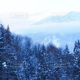 雪に覆われた山の写真・画像素材[975422]