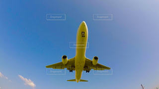 飛行機の写真・画像素材[596194]