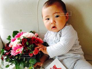 花の写真・画像素材[600381]