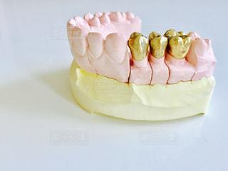 歯の写真・画像素材[602339]