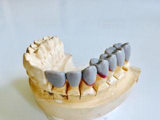 歯の写真・画像素材[602343]