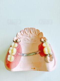 歯 - No.602344