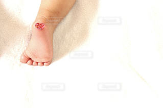 足の写真・画像素材[641683]
