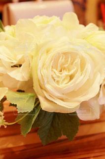花の写真・画像素材[641699]