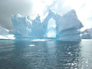 氷 南極の写真・画像素材[1010958]