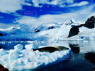 近く雪に覆われた山の写真・画像素材[1152543]