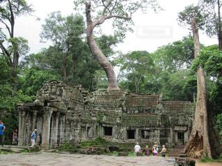 寺院の写真・画像素材[596838]