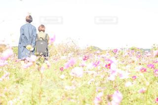 身長差夫婦の写真・画像素材[908913]