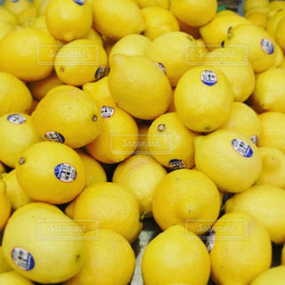 レモンの写真・画像素材[652069]