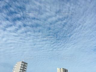 仙台のうろこ雲(地震雲)の写真・画像素材[1399583]