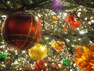 クリスマス ツリーの写真・画像素材[783568]