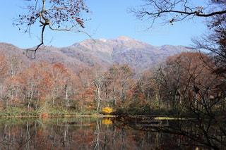 刈込池から望む三の峰(白山)の写真・画像素材[878669]