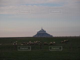 モンサンミッシェルと羊の写真・画像素材[1329050]